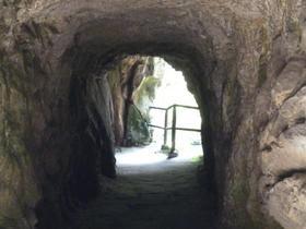 """""""Licht am Ende des Tunnels"""""""