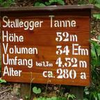 StalleggerTanne komp